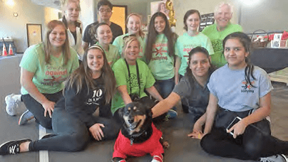 Meet Sadie the Anti-Bullying AmbassaDog!